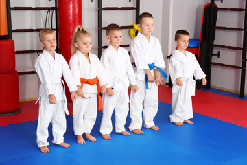 Little children wearing karategi in dojo
