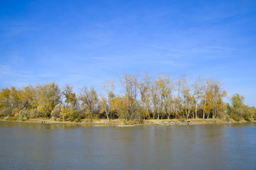 Autumn landscape. River bank with autumn trees. Poplars on the b