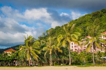 Tropical palms on sand beach