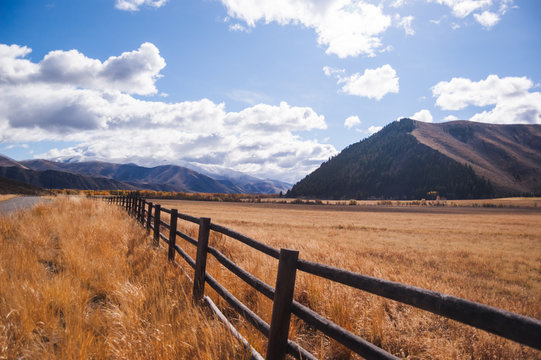 Fence Line in Rural Countryside