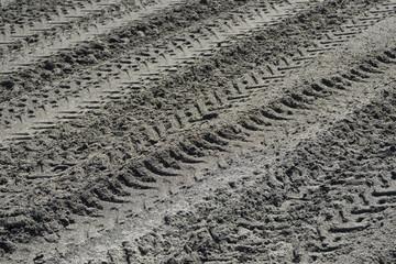 Tire tracks on seashore sand.