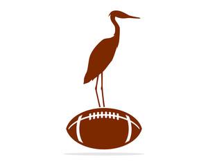 fotball stork