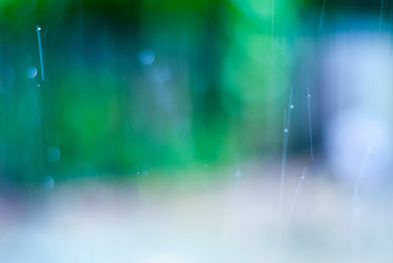 Rainy texture. Bokeh lights and Falling rain dropson a nature background .  Colorful light city  life in a rainy day