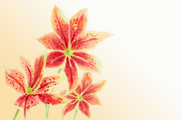 Greeting card with Lilly flowers.