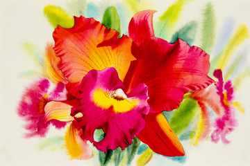 Watercolor painting orange pink red color of orchid flower.