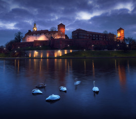Swans on background of Wawel Castle in Krakow, Poland