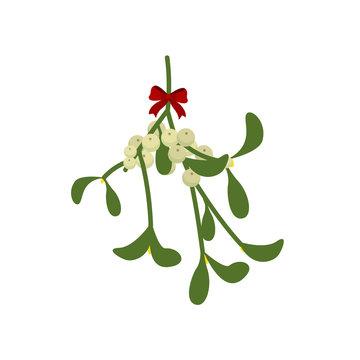 Christmas branch. Misletoe. Vector illustration