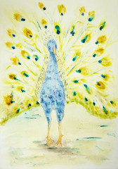 Peacock seen from the front. The dabbing technique gives a soft focus effect due to the altered surface roughness of the paper.