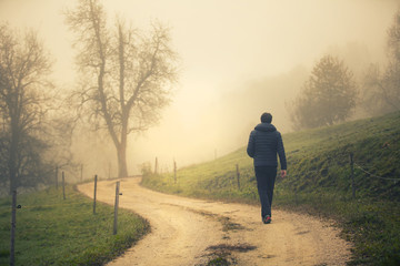 Back view of a person walks alone on morning countryside road. Wall mural