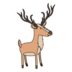 deer cartoon with long horns colorful silhouette in white background with thin contour vector illustration