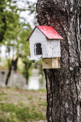house for birds, red white birdhouse suspended from a tree