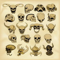 Hand-drawn human skulls illustration