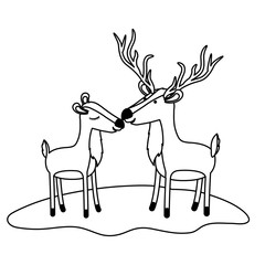 deer couple over grass in monochrome silhouette vector illustration