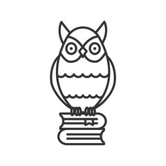 Owl on books stack linear icon