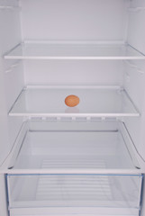 One eggs in open empty refrigerator.