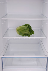 One salad in open empty refrigerator.