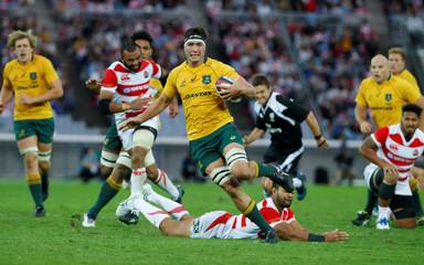 Rugby Test - Japan Brave Blossoms v Australia Wallabies