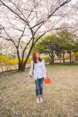 Beautiful young traveller happy and enjoying with cherry blossom tree in park.