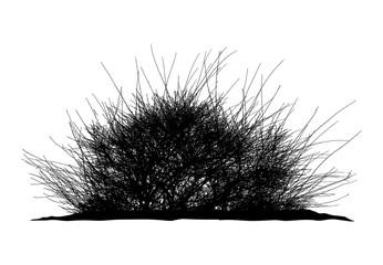 Realistic silhouette of bush (Vector illustration).ai10