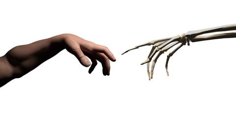 God hand vs skeleton