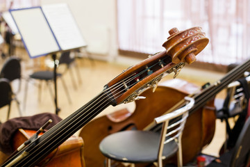 Fingerboard contrabass standing on the stage closeup