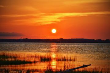 An orange shoreline sunset at the coast with driftwood..
