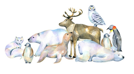 Watercolor cute polar animals illustrations, hand drawn isolated on a white background