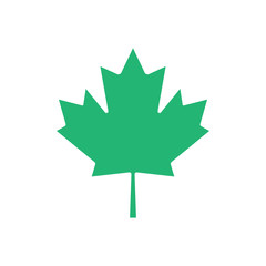Green maple leaf vector icon. Maple leaf clip art.