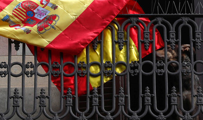 A dog sits near a Spanish flag on a balcony one day after the Catalan regional parliament declared independence from Spain, in Barcelona
