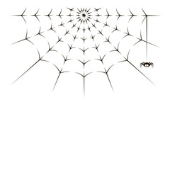 illustration of spider and spiderweb on white background