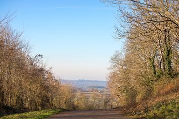 UK country lane