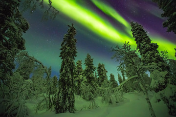 Photo sur Plexiglas Aubergine Northern lights image taken in Finish Lapland