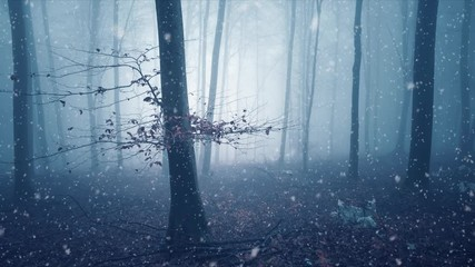 Wall Mural - Dreamy blue colored foggy forest tree background with snow falling. Fantasy colored autumn woodland. Color filter effect used.