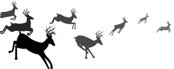 A group of deer running silhouettes, Animal Wildlife, Reindeer