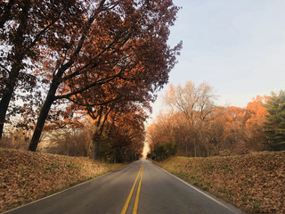 Autumn Scenic Highway Road with Colorful Fall Tree Leaves Foliage