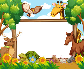Whiteboard with animals in forest