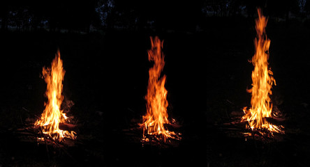 Set of three photo of an orange bonfire close-up isolated on a black background in a night forest. Dry thick logs burn and beautiful high tongues of red flame rise high in the sky