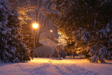Wall Murals Deep brown Beautiful winter night background. Beautiful winter evening landscape with footprints on a covered by fresh snow alley and shining lanterns in a park.