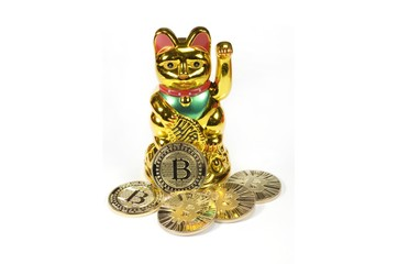 Bitcoin coin virtual cryptocurrency and happy cat