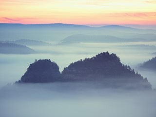 Dreamy landscape lost in thick fog. Fantastic morning glowing by gentle sunlight, foggy valley.