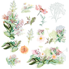 Collection of hand drawn flowers in watercolor style