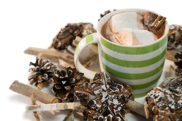 Chocolate drink and pines cones against white background