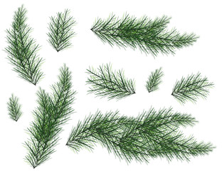 Realistic Set of Green Fir Branches. Christmas tree branches Isolated on white Background for Greeting Card, Flyers, Banners.