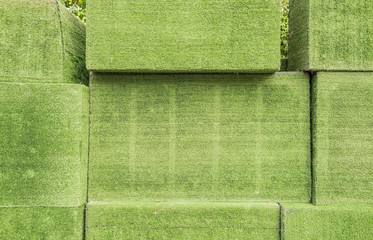 Green box, Grass Cube surface, texture for background .