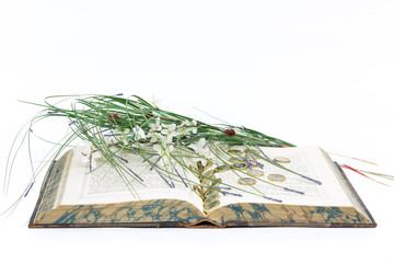 Old Book Open with Pound Coins and Flowers / Reeds on White Background