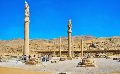 Apadana palace ruins, Persepolis, Iran