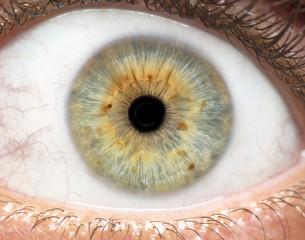 Keuken foto achterwand Iris Macro photo of human eye, iris, pupil, eye lashes, eye lids.