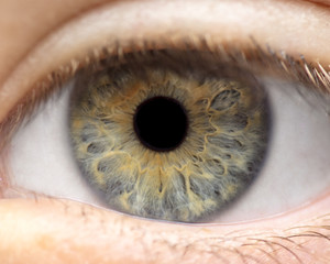 Fotobehang Macrofotografie Macro photo of human eye, iris, pupil, eye lashes, eye lids.