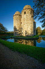 abandoned castle moat