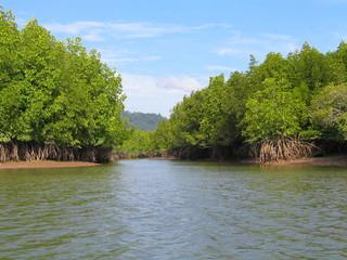 Krabi (Tailandia) en el mar de Andamán, zona de excepcional belleza natural de Asia